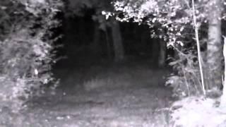 Nachtzicht Bresser 3x14 Digitale Nachtkijker
