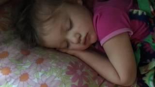 Junia whistle-snoring