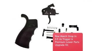 Delta Team Tactical : AR Pistol For Sale