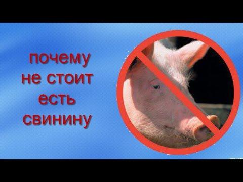 Можно ли есть свинину при похудении