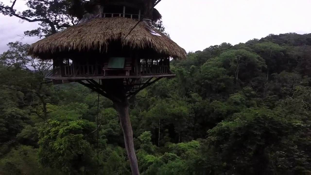 Modren Biggest Treehouse In The World Largest At Bravo Farms