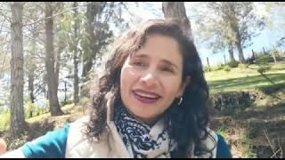 Beneficios de meditar y respirar conscientemente