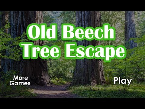 GFG Old Beech Tree Escape Walkthrough [GenieFunGames]