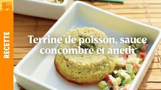 Terrine de poisson, sauce concombre et aneth