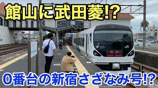 【館山に武田菱⁉】E257系0番台の特急新宿さざなみ4号新宿行きに乗ってきた