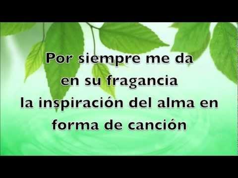 El lirio de los lirios -Pista - Ricardo Rodriguez