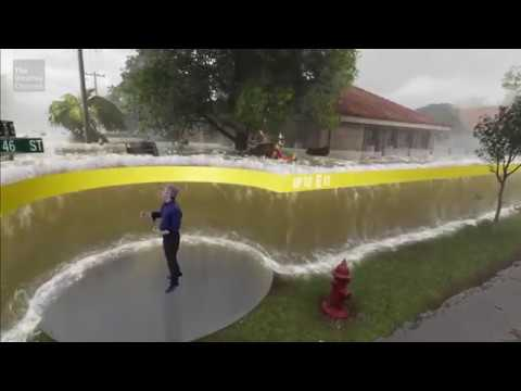 Experience Storm Surge Like You Never Have Before