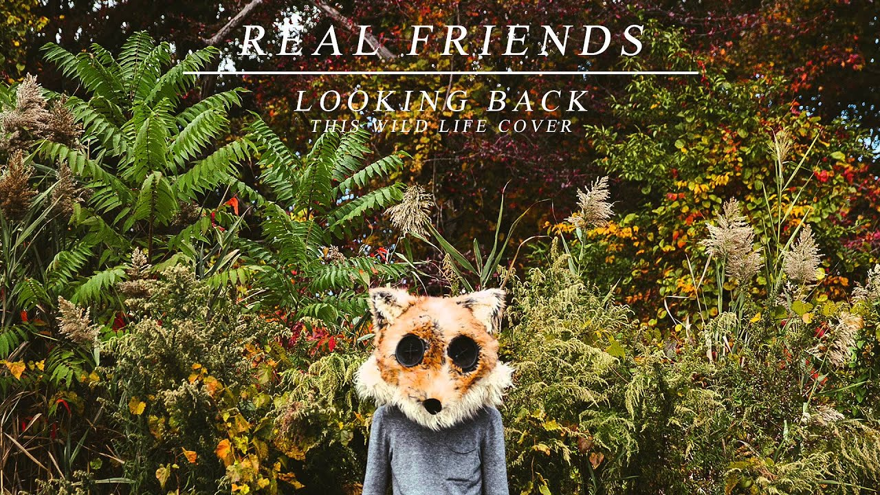 Real friends looking back this wild life cover youtube Real life friends apartment