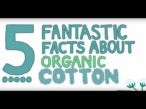 Five Fantastic Facts about Organic Cotton