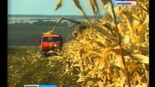 Более двух десятков республиканских предприятий стали участниками 17 й Российской агропромышленной в(, 2015-10-09T09:26:35.000Z)