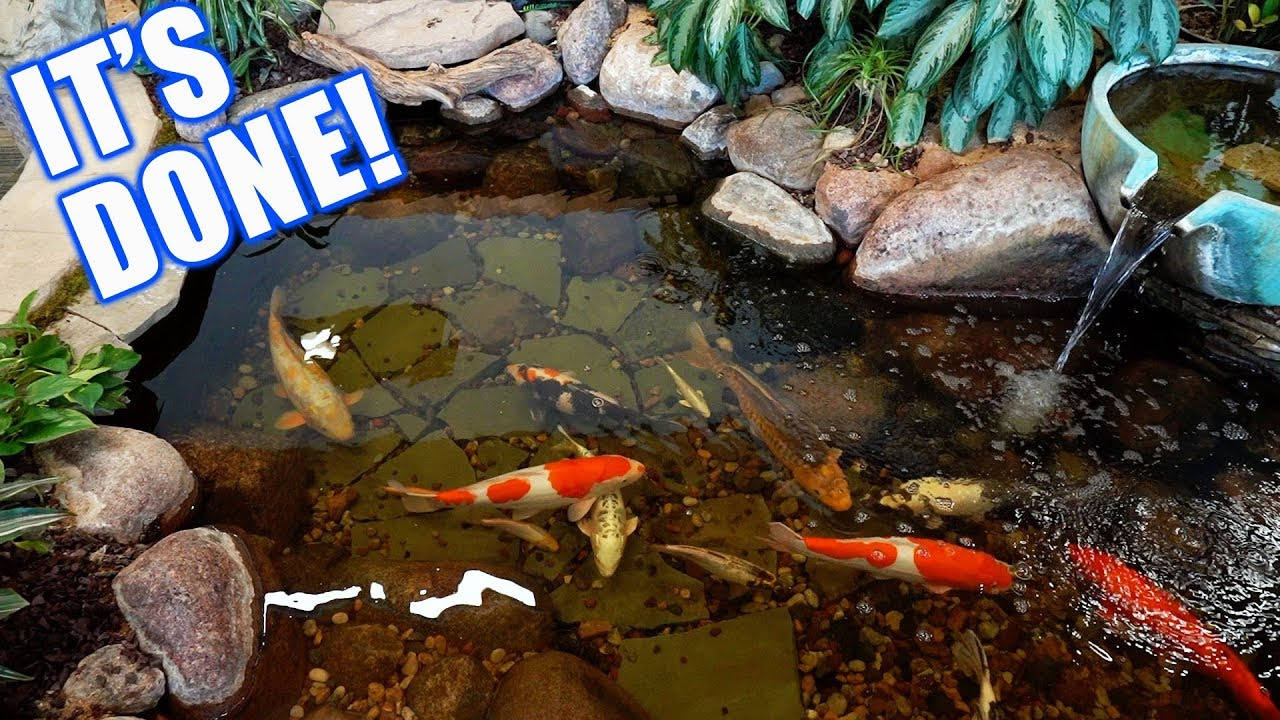 Indoor koi pond the big reveal youtube for Indoor koi pool