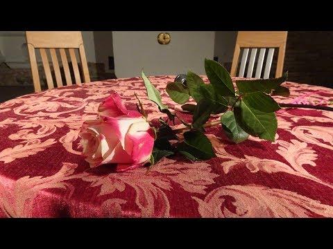 Tomiki poezji online dating