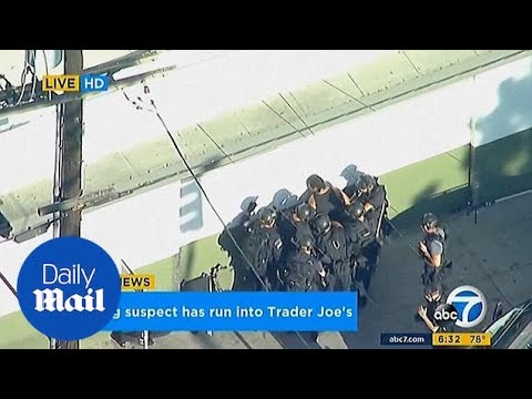 Gunman in custody after hostage standoff at Trader Joe's in LA - Daily Mail