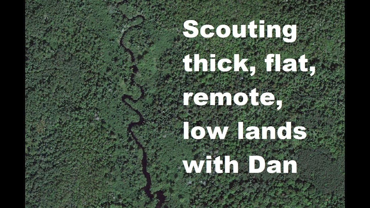 Scouting thick, flat, remote, low lands, with Dan & Rick