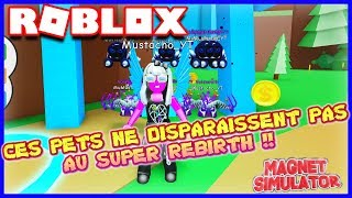 THESE PETS DO NOT DISAPPEAR AT SUPER REBIRTH!! | Roblox Magnet Simulator