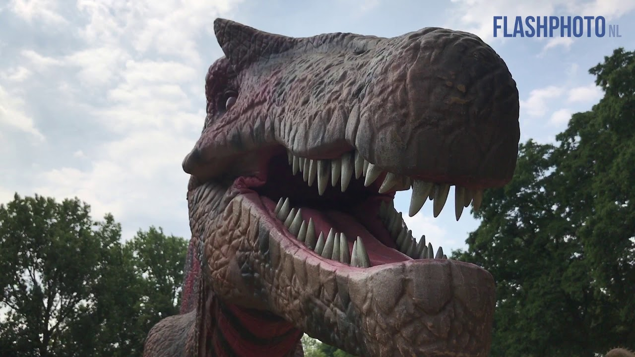 Dinos In Jurassic Kingdom Beatrixpark Schiedam Youtube