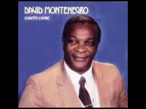 CD Completo David Montenegro  Canto Livre