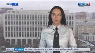 Вести Кузбасс зверское убийство собаки в Новокузнецке