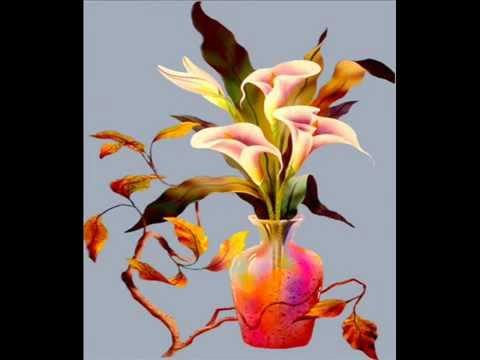 beaux vases de fleurs youtube. Black Bedroom Furniture Sets. Home Design Ideas