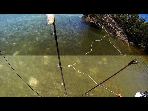 Back To The Backcountry - Fishing Key West