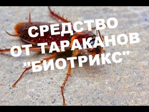 """Обработка московской квартиры от тараканов-туманом!Вызвали """"Биотрикс"""""""