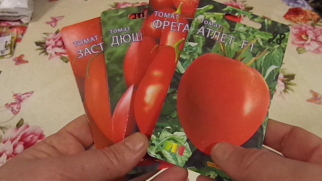 Когда и как сеять помидоры на рассаду. Посев семян на рассаду .