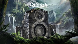 Caloosh - Wise Dub Inna Jungle ( Jungle Dubwise DNB mix 2020 )