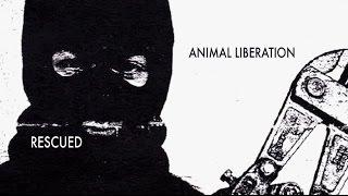 Спасённые: Освобождение животных / Rescued: Animal Liberation (2012)