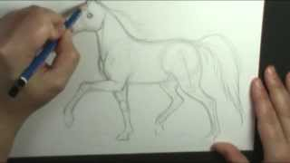 How to draw a horse trotting