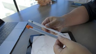 Apple Pencil versus Logitech Crayon