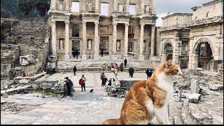 Путешествия по Турции. Легендарный Эфес.
