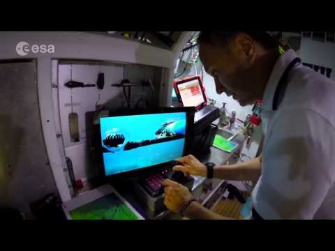 Tell Me A Story: What is a NEEMO Mission?