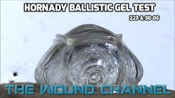 Amazing Ballistic Gel Test!! **Hornady 223 & 30-06**