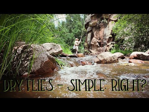 Finally A Chance To Go Fish Dry Flies!  ||   Fishing The Jemez Mountains, New Mexico