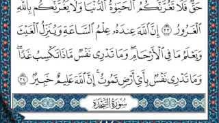 سورة لقمان للقارئ محمد النقيب hd