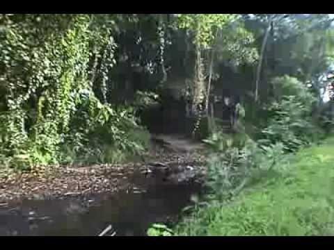 Kokanchi Mega Vaat (Mega 'Vaat' in the Konkan)