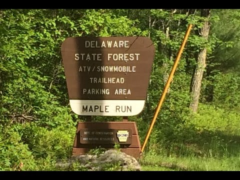Maple Run ATV Trail - Pennsylvania State Forest June 2015