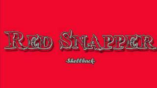 Red Snapper - Shellback