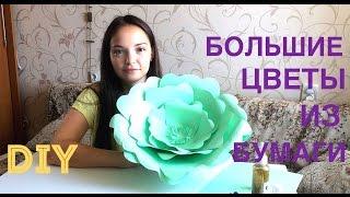 DIY | Большие цветы из бумаги(В этом видео мы покажем и расскажем как сделать большие цветы из бумаги Наши контакты Vk: marrymelab insta: marrymelab..., 2015-08-20T19:25:29.000Z)