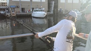 Goliath Grouper Fishing - Ramp Monsters