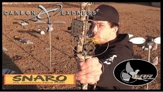 Bow Hunting Pigeons: Carbon Express, Snaro, and SNM