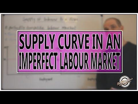 7  Supply curve of labour: Imperfect labour markets
