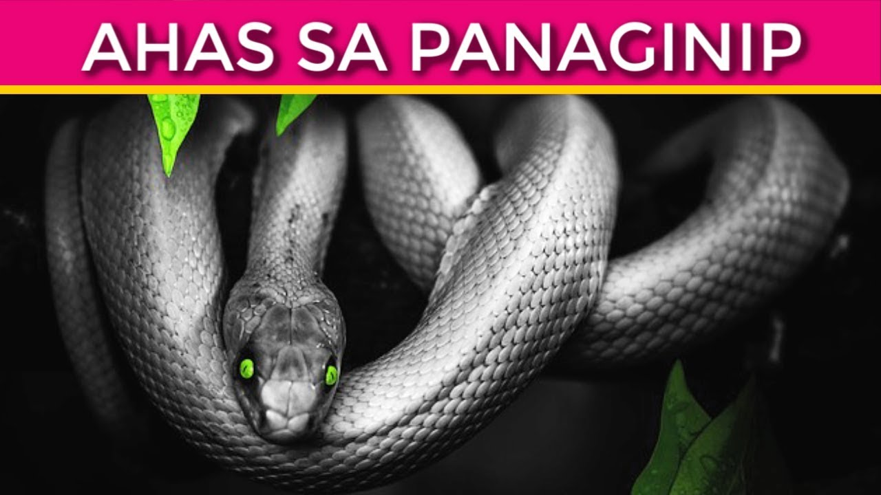 Wag Mo Balewalain Ang PANAGINIP ng AHAS - Interpretasyon