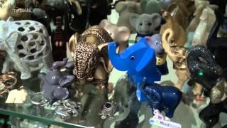Professor Flávio e o passo do elefantinho