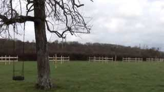 Fencing Fruit Trees In The New Orchard.part 1