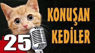 Konuşan Kediler 25 - En Komik Kedi Videoları