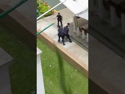 Man subdued by police officers in a standoff at Bendemeer