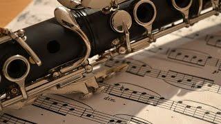 موسيقى ودموع - مع جمال آلة الكلارينيت