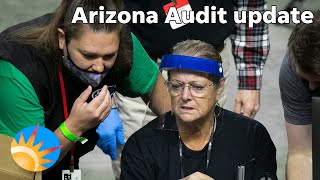 Watermarks, bamboo and QAnon: Here's an update on the Arizona audit hand count and what's next