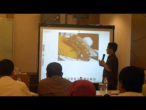 Presentasi i-board live Makassar